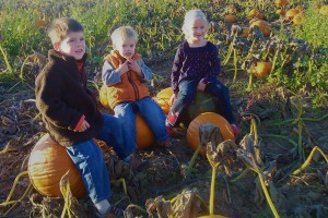 pumpkins and kids